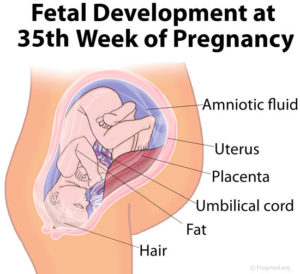 35-weeks-pregnant-contractions