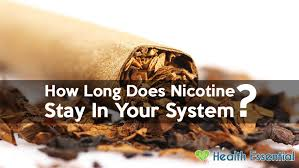 How Long Before Nicotine Is Out Of Your System