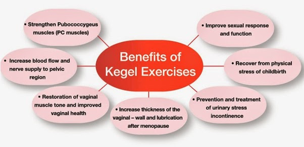 How Long Does It Take for Kegels to Work