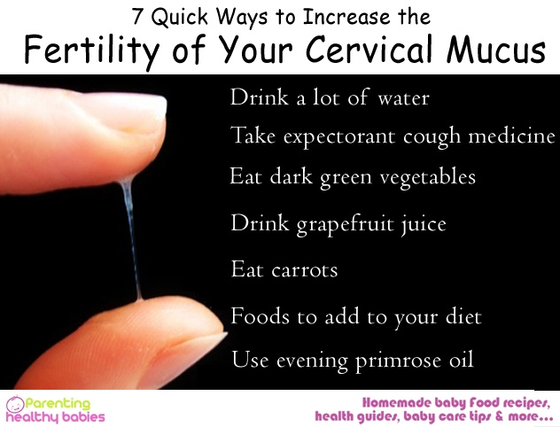 what does cervical mucus look like before ovulation