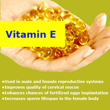 Is It Safe To Take Vitamin E When Pregnant
