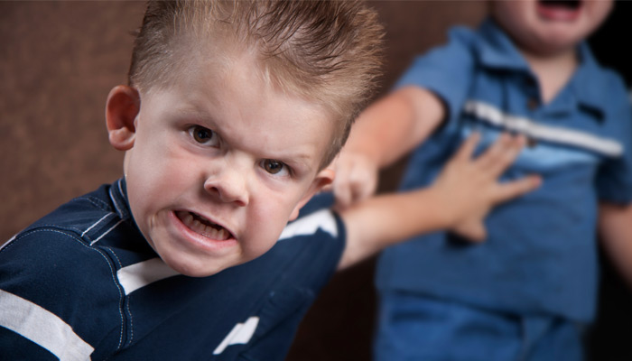 What Are Some Of The Causes Of Aggression In Children